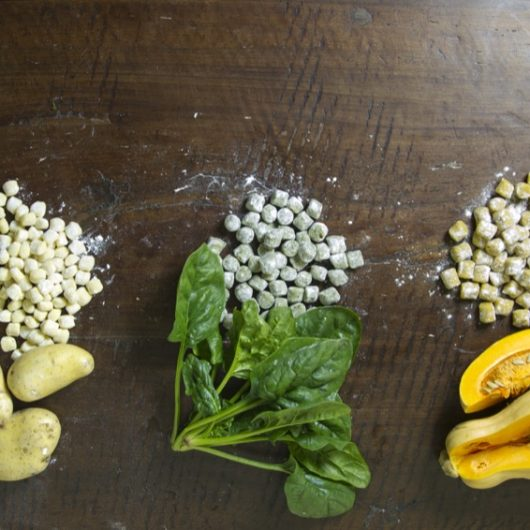 ingredients and gnocchi